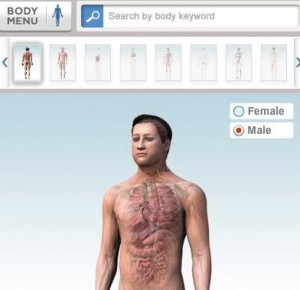 Bodies in 3D 114s for Windows  Www ftparmy com